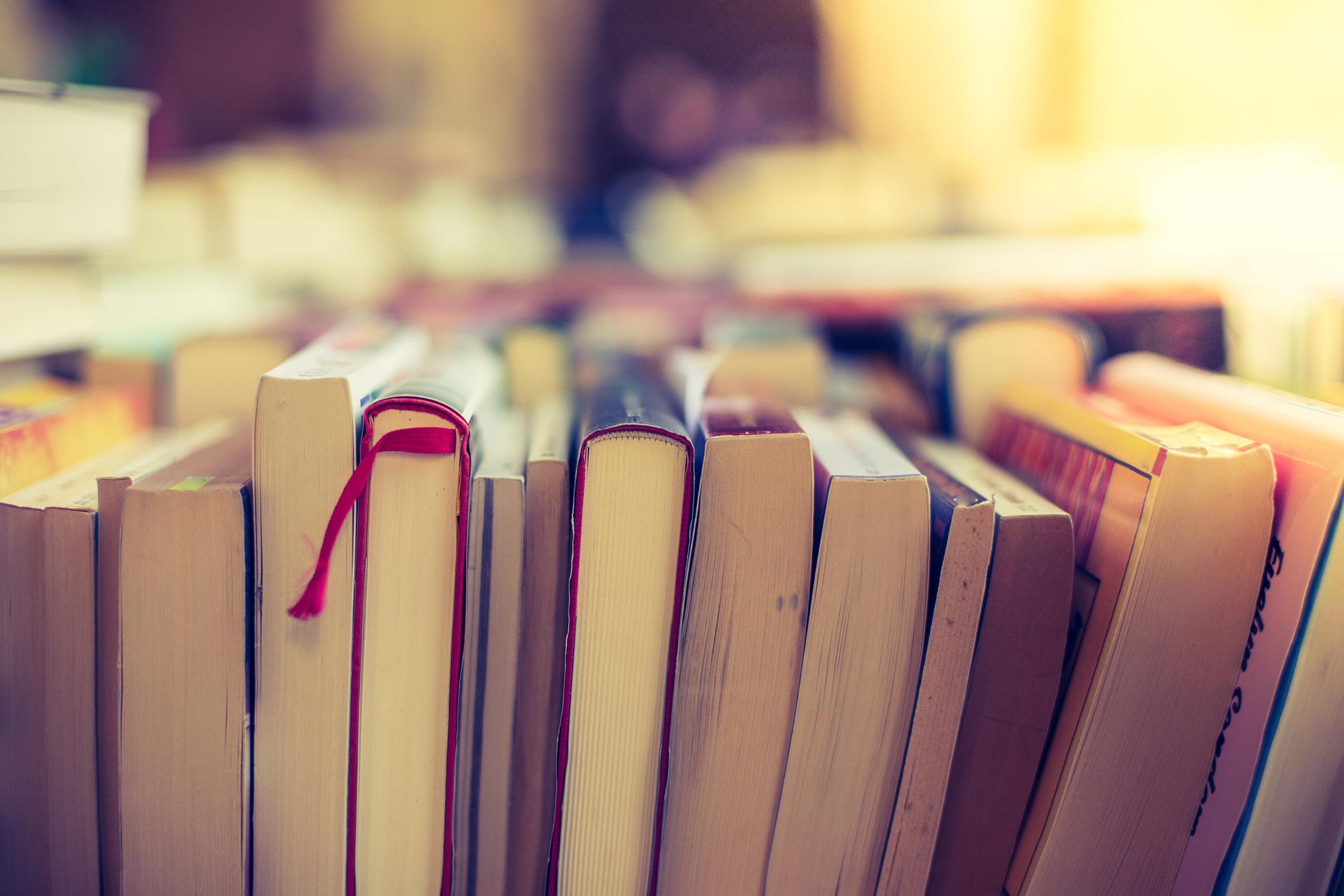 Appel à dons de livres pour la 16e fête du livre du Secours populaire de Noisiel - Communauté d'agglomération Paris - Vallée de la Marne